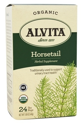 HORSETAIL GRASS TEA ORGANIC  24 BAG