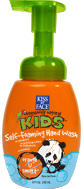 HAND WASH,FOAM,ORANGE 8 OZ